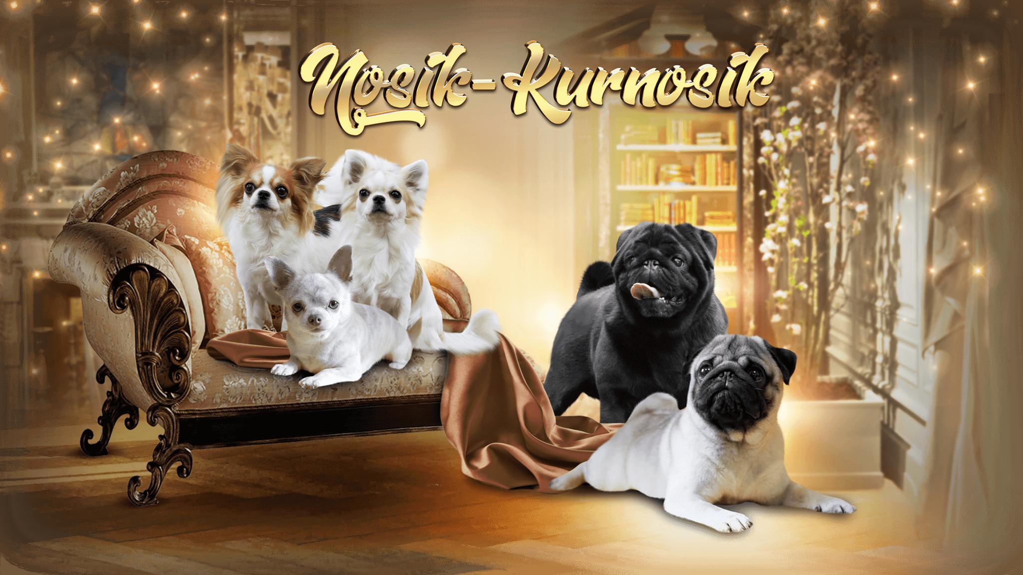Носик-Курносик